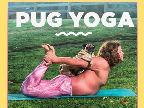 We should all be ringing in 2018 with this Pug Yoga calendar
