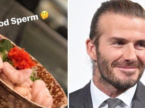David Beckham munches on some cod sperm but it tastes like pork brain apparently