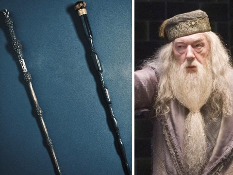 Dumbledore's back according to a new Fantastic Beasts And Where To Find Them image