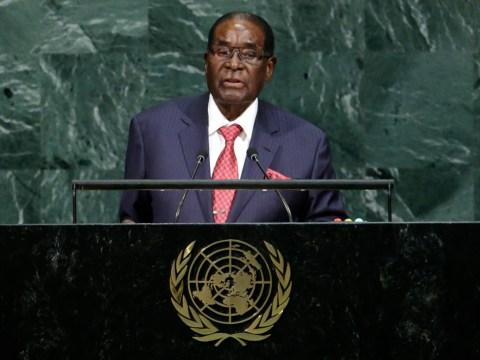 Robert Mugabe net worth revealed as the president of Zimbabwe is taken into custody