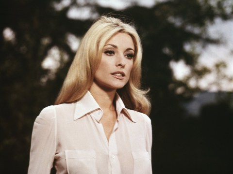 Who was Sharon Tate? Roman Polanski's wife killed by the Manson Family