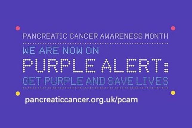 Pancreatic Cancer Awareness Day 2017: What is pancreatic