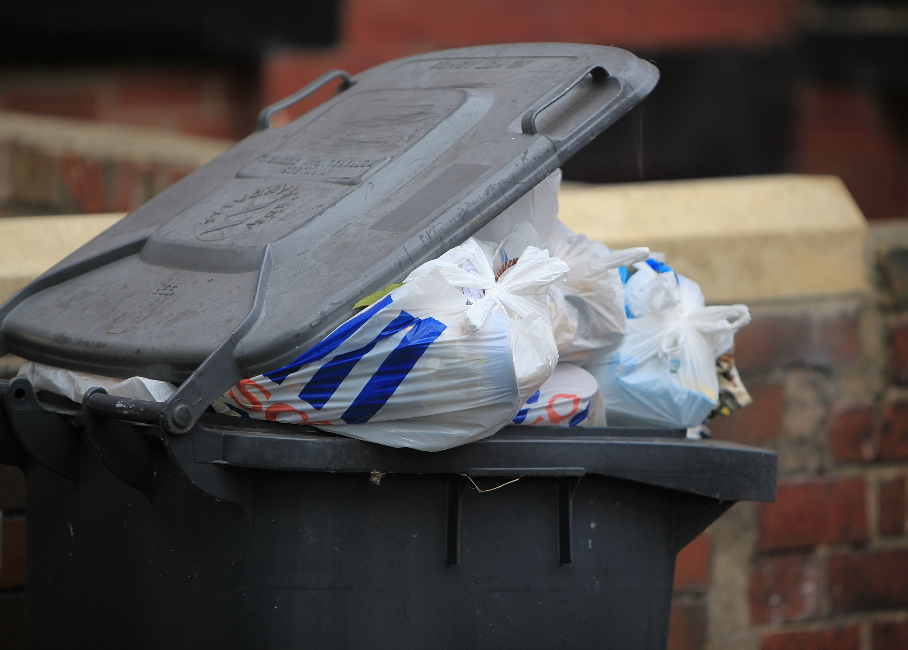 What are the bin collection dates for Christmas 2018?