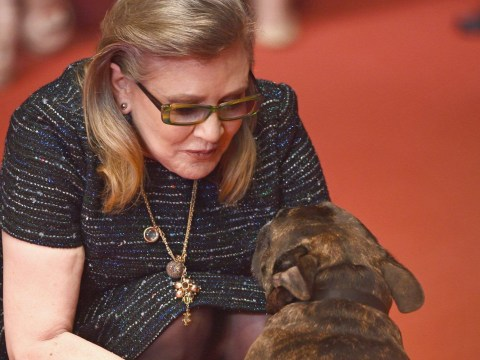 Rian Johnson confirms the late Carrie Fisher's dog Gary has a Star Wars: The Last Jedi cameo