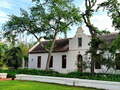 Now is the perfect time to visit South Africa's Stellenbosch for good food, great wines and a slice of culture
