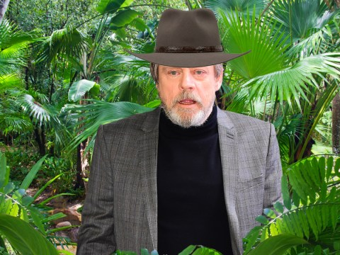 Star Wars: The Last Jedi's Mark Hamill has been asked to do I'm A Celebrity
