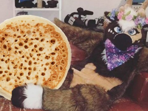 Warburtons crumpets apologises after using a hashtag linked to furry group