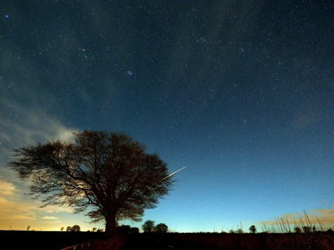 When and how to see the Geminid meteor shower tonight