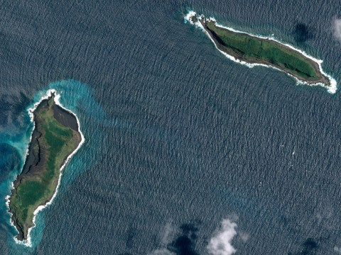A weird island called Hunga Tonga appeared out of nowhere and it won't disappear any time soon