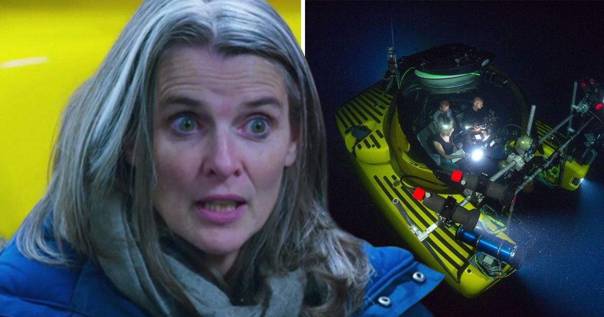 Blue Planet 2 producer Orla Doherty on why she risked her life for the show