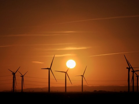 Wind farms generated more energy than coal most days this year