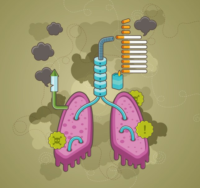 Illustrative shot of human lungs depicting effects of smoking on health