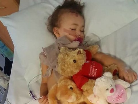 One-year-old girl left for dead in Birmingham hit-and-run