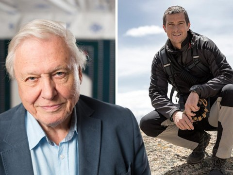 Sir David Attenborough slams Bear Grylls for killing animals for TV