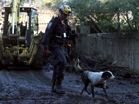 California mudslide rescuers 'hoping for a miracle' amid fears death toll could hit 57