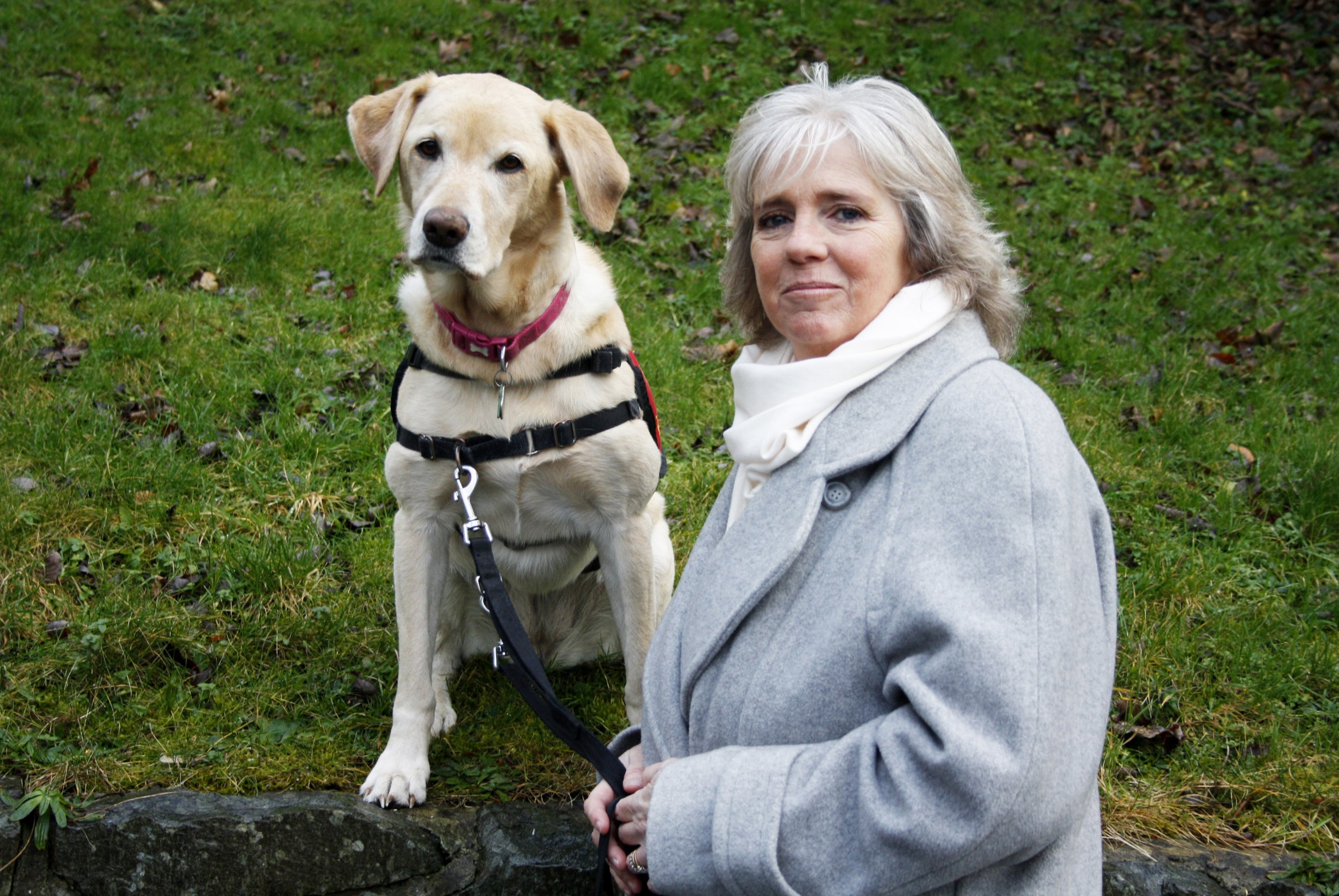 Disabled woman wins fight against pub that banned her guide dog