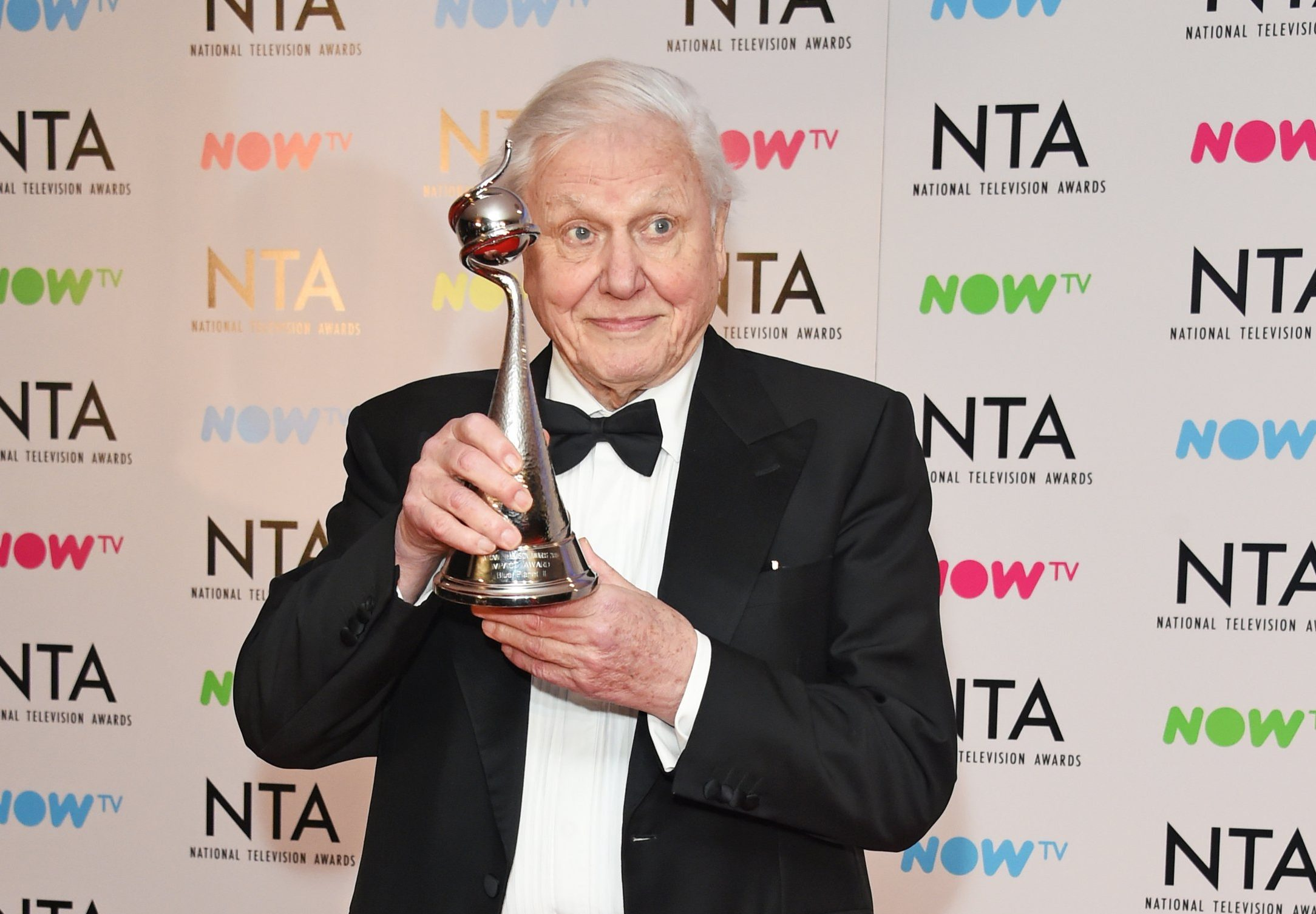 Sir David Attenborough receives standing ovation at NTAs as he urges us to protect our 'beautiful world'