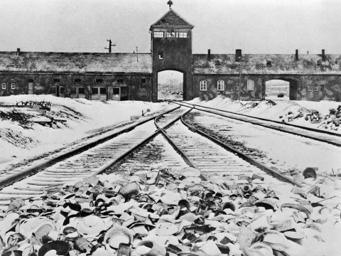 Poland accused of 'rewriting history' with new Holocaust law