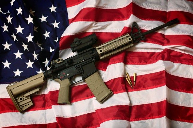 Image result for gun consumption in america