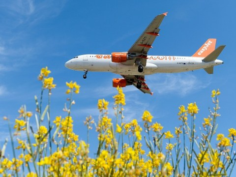 If you scribble a love poem on an airline sickie bag, EasyJet might give you free flights