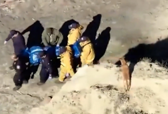 Man falls 500ft to his death trying to keep his dog safe