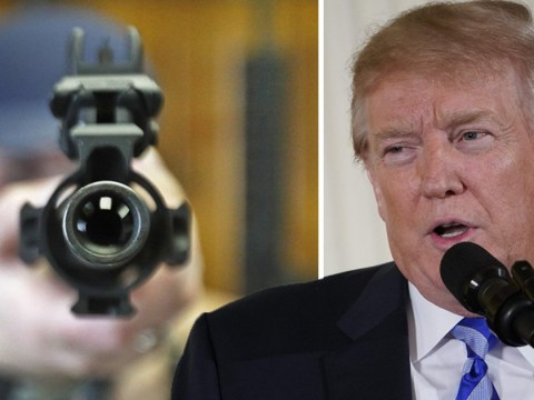 Donald Trump finally calls for greater background checks on people buying guns