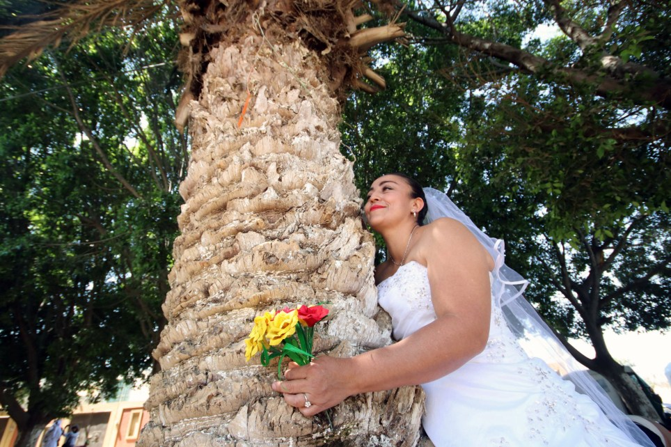 A woman dressed as a bride hugs a tree during a wedding between people and trees to raise awareness and respect to trees and to stop illegal logging in San Jacinto Amilpas, Oaxaca state, Mexico February 25, 2018. REUTERS/Jorge Luis Plata NO RESALES. NO ARCHIVES