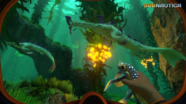 Subnautica (PC) - it's best to keep away from those