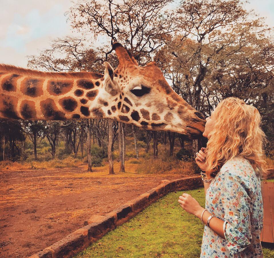 A unique safari: kissing giraffes at breakfast, a hidden lodge surrounded by rhino and sleeping under the stars in Kenya