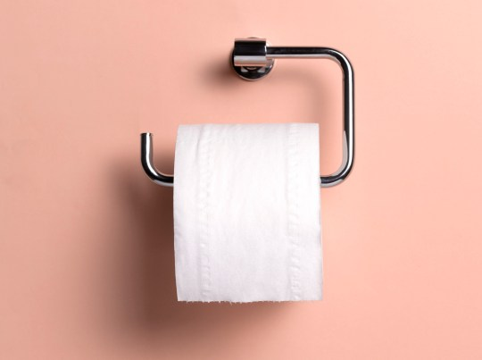Is family cloth reusable toilet paper a good idea? | Metro News