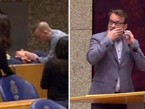 Man 'tries to hang himself' from public gallery in Dutch parliament