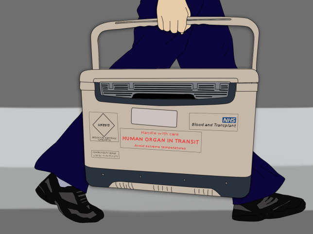 ***ILLUSTRATION REQUEST*** This is what it's like to wait for a kidney transplant on the national organ donor waiting list (Rosy Edwards)