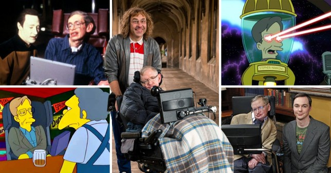 Stephen Hawking dead: His best TV comedy moments | Metro News