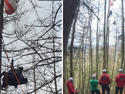 Paraglider gets stuck 70ft up a tree after crashing into woodland