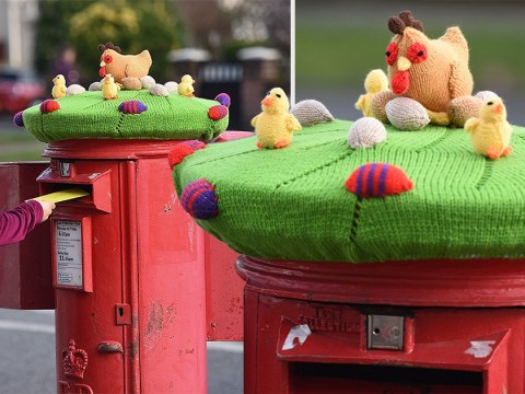 A mystery knitter is making Easter themed cosies for postboxes
