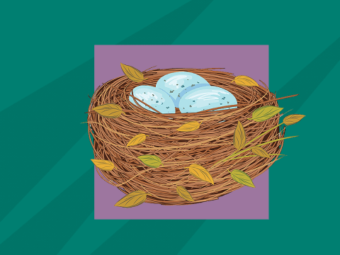 A guide to birdnesting, the hot new divorce trend