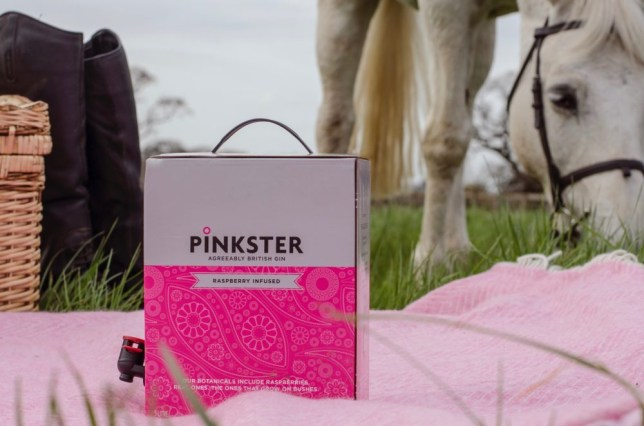 Pinkster gin in a box on tap with a horse. We don't know why there's a horse but there is.