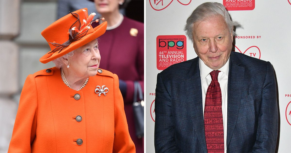 David Attenborough is actually teaming up with the Queen for new TV show