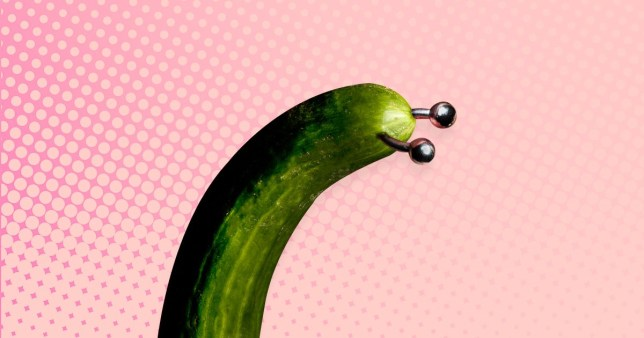 Cucumber with a piercing at the top, representing a prince albert piercing on a penis