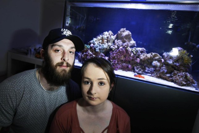 Chris Matthews with his girlfriend. A man revealed how CORAL in a fish tank poisoned him and other family members while he was cleaning it. See story SWTANK. Chris Matthews, 27, was hospitalised along with his girlfriend, mum, dad, sister and her boyfriend, and four firefighters after they breathed in toxic fumes. Experienced fish owner Chris was cleaning out a tank and moving the contents to another container when the accident happened. In the process he took out a rock covered in coral and scraped it clean. Inadvertently he released deadly substance palytoxin into the atmosphere, and then closed the door and went to sleep. The following day the entire family suffered flu-like symptoms, and even their two dogs became ill. Chris suffered breathlessness, coughing and fever which he said was 'as bad as pneumonia'. Over the course of the day, his mother, sister and her boyfriend all came down with varying levels of illness. Chris realised that it was likely the family had been poisoned and dialled 999.