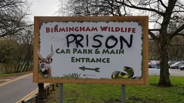 Animal rights vandals have daubed the word 'Prison' on the entrance sign to a Birmingham wildlife attraction. The board outside the Birmingham Wildlife Conservation Park was covered in the graffiti overnight. Caption: Graffiti is daubed on the Birmingham Wildlife Conservation Park sign