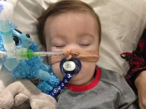 Who is Alfie Evans and what is the Alder Hey Hospital protest about?