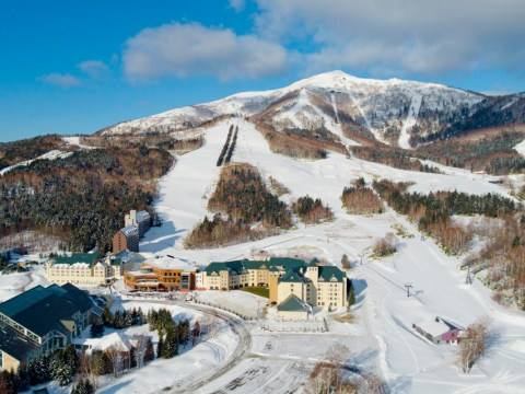 With the Alps next door, is skiing in Japan worth the trip?