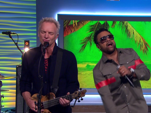 Sting and Shaggy have everyone wondering WTF they just saw as they duet on TV