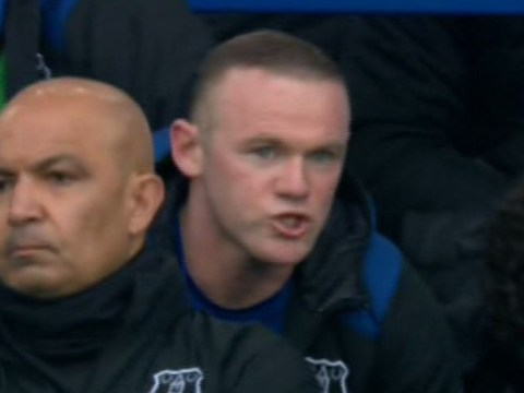 Wayne Rooney rages at Sam Allardyce after being subbed early against Liverpool