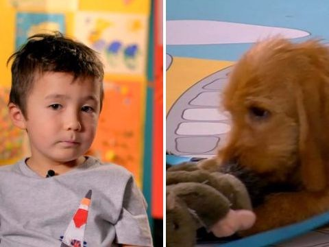 Secret Life Of 5 Year Old's kids howling as they face nasty surprise from adorable dogs