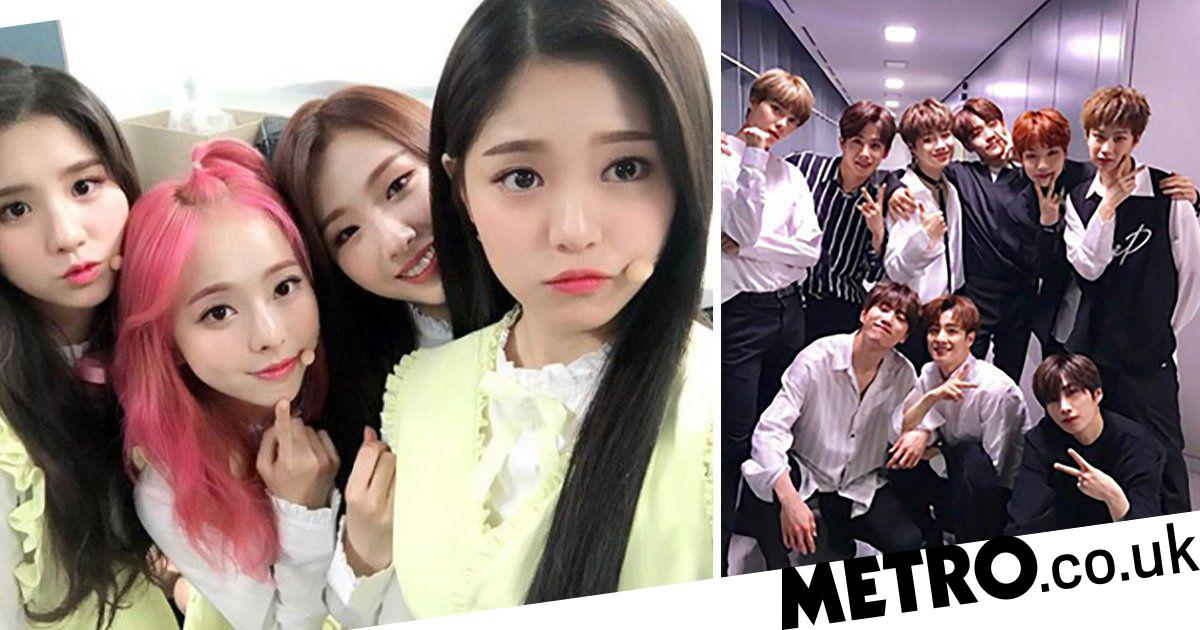 K-pop rookies you need to know about: From LOONA to Stray
