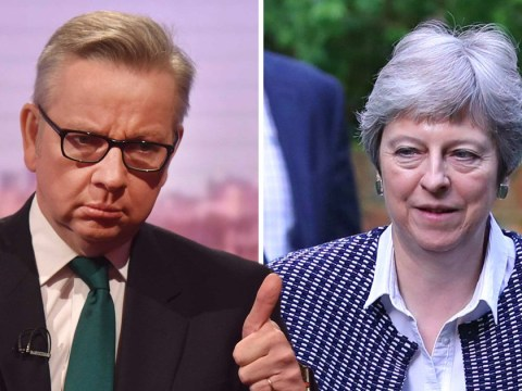 PM's Brexit plan is flawed, says Michael Gove