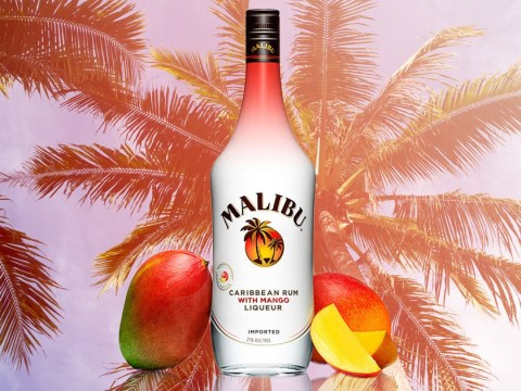 Cocktail glasses at the ready: Mango flavoured Malibu is here