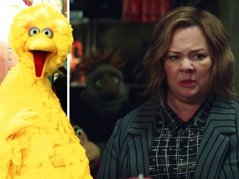 Sesame Street sues explicit Melissa McCarthy puppet movie for 'tarnishing' the brand